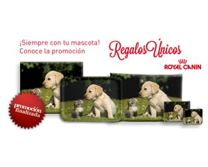 Regalo Unicos Royal Canin